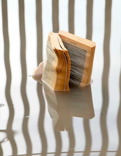 Book Puddle image