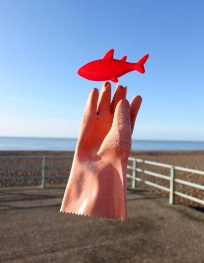 Glove feesh image